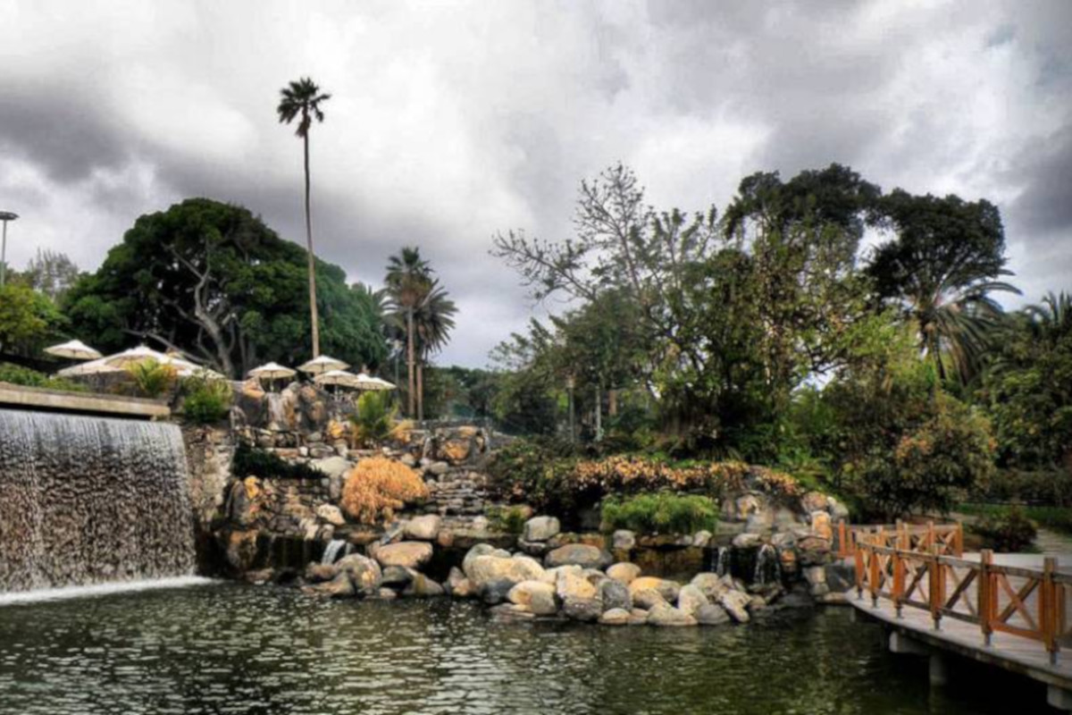 Las Plamas, botanical garden and volcanoLas Plamas, botanical garden and volcano