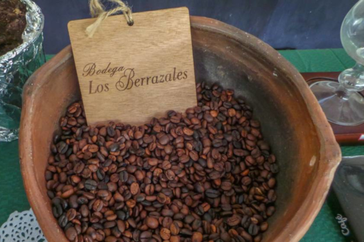 Around the island and coffee plantation